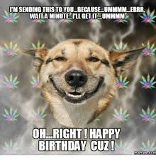 Birthday Dog Meme - 25 best memes about happy birthday smiling dog happy