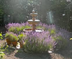 this week in garden lavender u2013 blueberry hill crafting