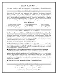 C Level Executive Resume Samples by Professional Business Development Resumes Writing Resume Sample