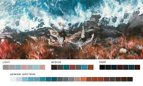 movie magic 4 ways to use film color palettes to transform your work