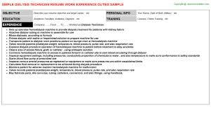 A P Mechanic Resume Best Slot Technician Resume Photos Simple Resume Office