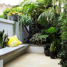 Tropical Potted Plants Outdoor - best 25 tropical gardens ideas on pinterest tropical garden