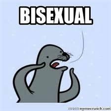Bisexual Memes - image jpg w 400 c 1