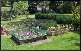 raised bed gardening stephi gardens