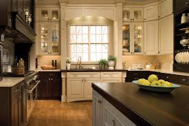 kitchen cabinets gallery impressive kitchen cabinet gallery pictures 1 17925 home designs