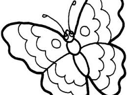 coloring pictures of small butterflies stuff to color a to z kids stuff butterfly color page coloring home