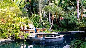 Designing A Backyard Tropical Plants Retreat Sunset Com