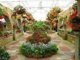 Botanic Gardens Hobart The Conservatory Hobart Botanical Gardens Favorite Places