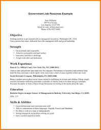 Government Job Resume Format by Resume Government Resume Template