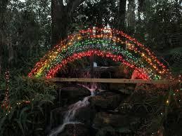 Florida travel light images Best 25 winter in florida ideas winter garden jpg