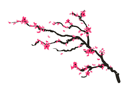 skin beautiful blossom tree mytat com