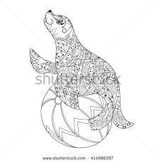 royalty free hand drawn doodle outline sea lion u2026 414966385 stock