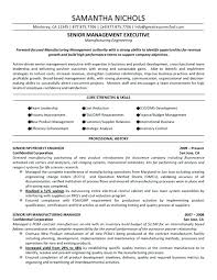 project manager resume sle program manager resume assistant project it project