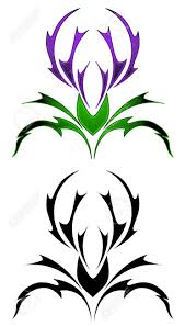 thistle tattoo royalty free cliparts vectors and stock