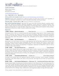 Sample Executive Summary For Resume by Professional Summary For Resume Resume For Your Job Application
