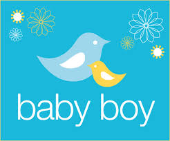 baby shower posters free printables momma bird baby shower hostess with the mostess