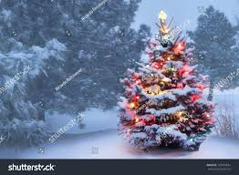this decorated outdoor snow covered christmas stock photo