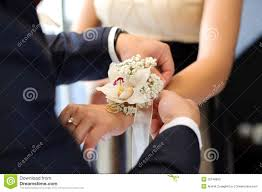 Orchid Boutonniere Orchid Boutonniere Royalty Free Stock Photo Image 32146835
