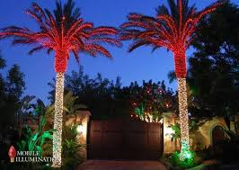 8 best new house lights images on palm trees