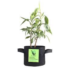 amazon com g leaf 5 gallon 10 bag grow bag grow pot for plant