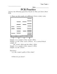 pcr gel electrophoresis practice worksheet by grace pokela tpt