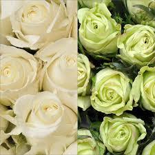 sams club wedding flowers roses green white 125 stems sam s club wedding
