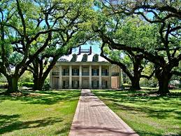 southern plantation style homes 17 best southern plantations images on southern