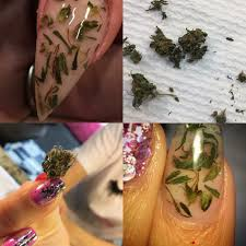 weed nails are the new beauty trend u2013 afk spot