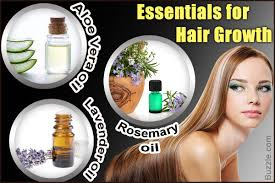 6 essential oils for hair growth you must consider using