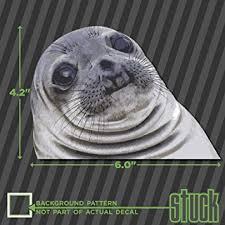 Awkward Seal Meme - com awkward seal face meme 6 0 x4 2 printed vinyl