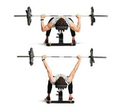 What Muscle Do Bench Press Work Soccer Strength 9 Exercises That Will Help You Add Power To Your