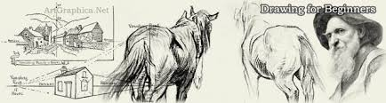 drawing an animal how to draw pets and animals