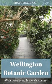 New Zealand Botanical Gardens Wellington Botanic Garden Wellington Nz Travel Daze