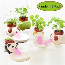 animal planter amazon com self watering animal planter cute style ceramic mini