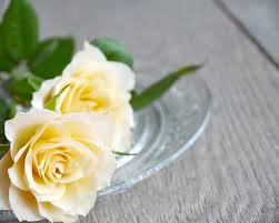 White Rose Bouquet Free Photo Yellow Bouquet Of Roses White Roses Bouquet Max Pixel