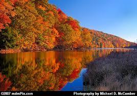 fall foliage reflections laurel hill lake u0027s shore picture