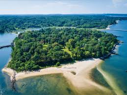 island with 6 houses for sale business insider