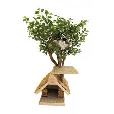 5 awesome cat trees that look like trees purrfect cat breeds