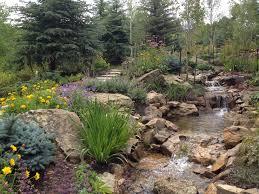 beautiful backyard stream architecture nice