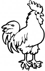 free farm animal coloring pages rooster animal coloring pages of