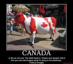 Canada Day Meme - www socialanxietysupport co humor pinterest funniest photos