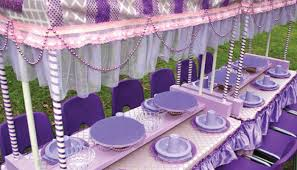 princess kids party hire adelaide