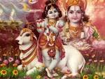 Wallpapers Backgrounds - Lord Krishna Child Vishnu Skies cow God Hindu