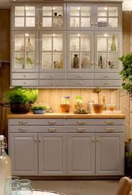ikea kitchen cabinets glass kitchen ikea bodbyn glass cabinets 59 ideas ikea küche