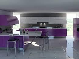1950 kitchen design 100 designed kitchen appliances lg cooking appliances