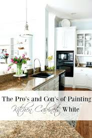 birch kitchen cabinets pros and cons birch cabinet pros and con pros and cons of painting kitchen