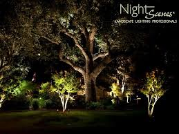 Outdoor Up Lighting For Trees Oak Tree Lighting In And Central Nightscenes