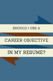 Job Objective Resume Example by Best 20 Resume Career Objective Ideas On Pinterest Career