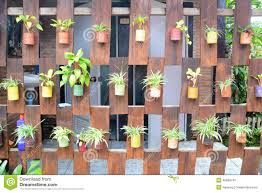 hanging wall plant home design ideas
