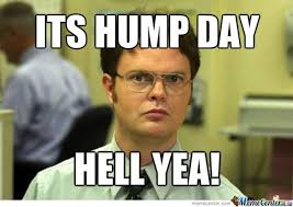 Wednesday Hump Day Meme - happy hump day meme images humor and funny pics